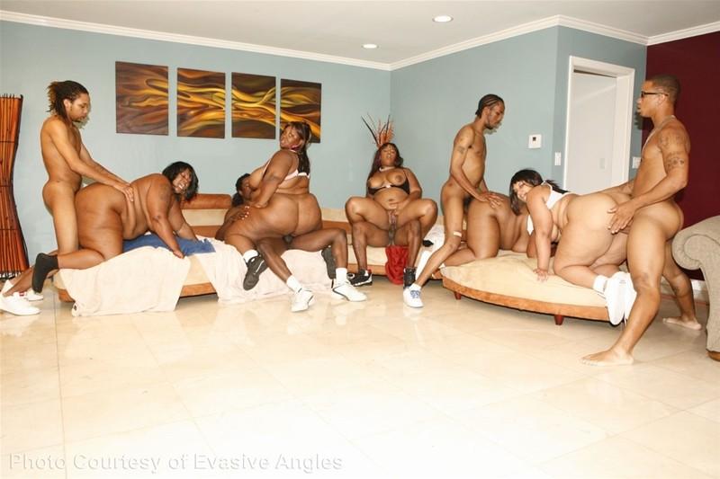 chubby orgys Black