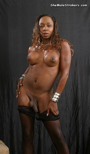 Black shemale lisa cage