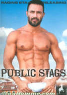 Public Stags Porn Movie