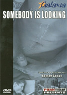 Somebody Is Looking Porn Movie