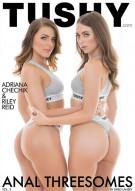 Anal Threesomes Vol. 3 Porn Movie