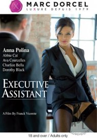 Executive Assistant Video Image